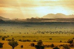 Kidepo, Uganda