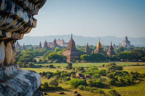 Pastoral View of Sprawling Temple Complex in Bagan, Burma