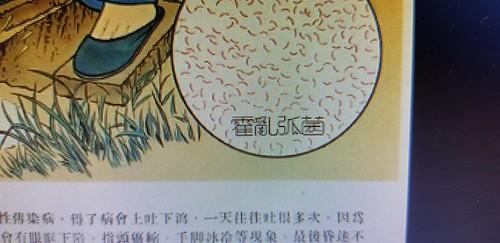 Cartazes chineses