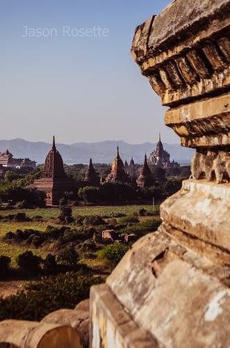 Pastoral Sunny View of Sprawling Temple Complex in Bagan, Burma (vertical)