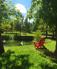 Red chair by the pond