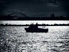 Zeig mir das Glitzern auf dem Wasser   2. September 2019   Fehmarn - Schleswig-Holstein - Deutschland