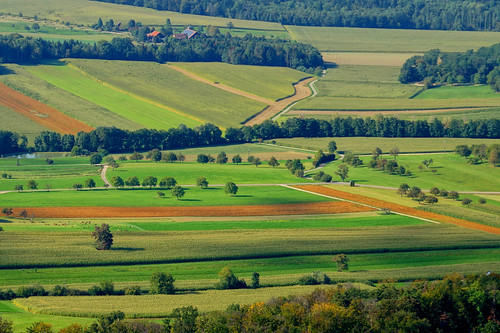 Late summer fields ©twe2019☼