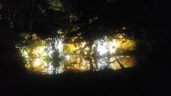 Réouverture des jardins Albert Kahn