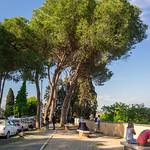 I pini del Gianicolo - https://www.flickr.com/people/53407766@N00/