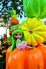 Midori Green Apple