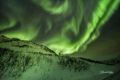 Aurora Boreal Montañas de Senja
