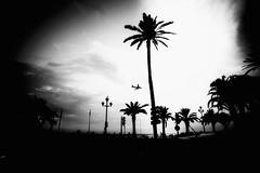 Plane Landing at Nice Airport