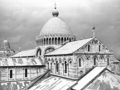 Pisa 1976