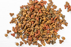 Dry food for kittens closeup