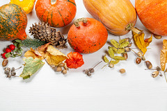 Autumn background with acorns, leaves, pumpkins on a white wooden background. Concept Halloween, harvest, thanksgiving