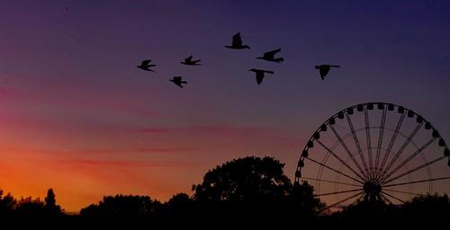 Ferris Wheel for repair before moving to London