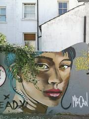 Brighton Street Art 1
