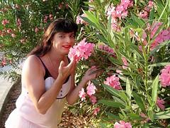 Pink Paula