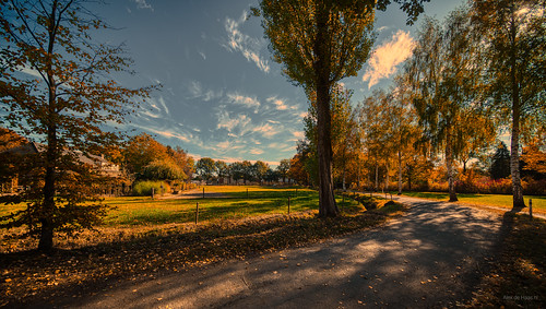 Autumn Road.