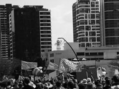 School Strike 4 Climate Brisbane 039 BW