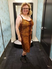 Sue In The Tiger-Striped Dress
