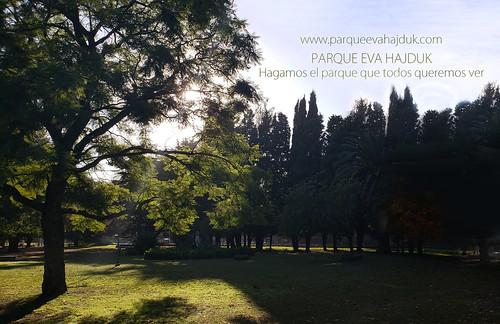 Hagamos el parque que queremos ver - Diaz De Vivar Gustavo