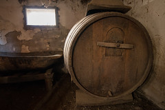Huge wood barrel in the celler
