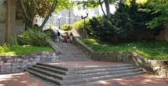 Georgetown library steps