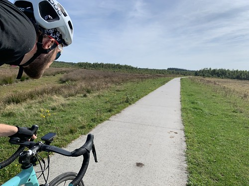 91,5km in the Netherlands, all is flat again and animals blocking the road 😁🚴