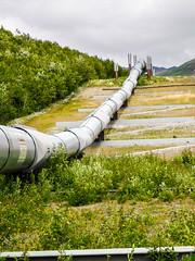 Trans-Alaska pipeline view