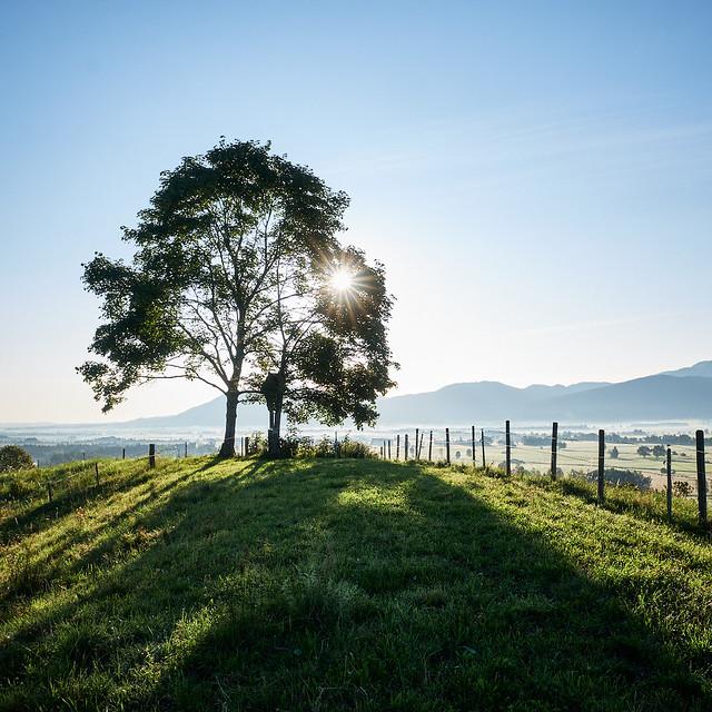 Touring Bavaria