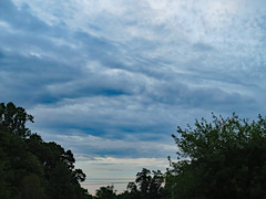 Clouds And Treetops.