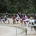 Kasaške dirke v Komendi 22.09.2019 Tretja dirka