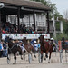 Kasaške dirke v Komendi 22.09.2019 Šesta dirka