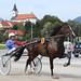 Kasaške dirke v Komendi 22.09.2019 Prva dirka