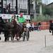 Kasaške dirke v Komendi 22.09.2019 Kmečke dvoprege