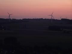 Maisnil-lès-Ruitz , parc d'Olhain  coucher de soleil