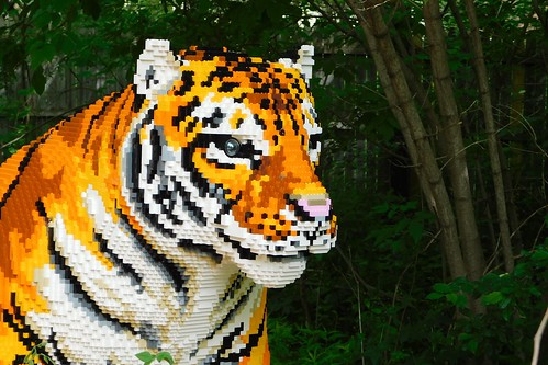 Brookfield Zoo Brick Safari