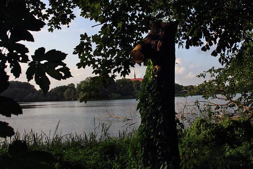 Am Bordesholmer See (11)