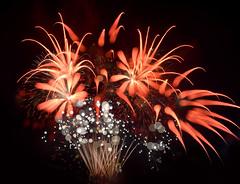 Fireworks 今夜煙花燦爤 2013-2019