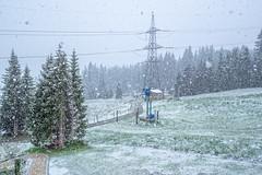 First snow - Summer 2019 - Königsleiten - Austria