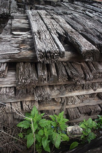 Rotten weathered wooden railroad ties stacked outside old station in Cambodia (with green weed below)