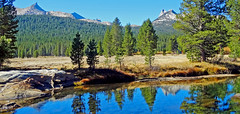 Tuolumne Meadow and River, Yosemite 2018