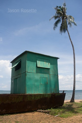 Green Metal Shack on a Barge with Palm Tree