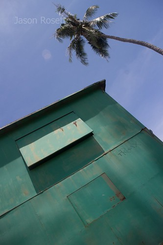 Low Angle View of Green Metal Shack and Palm Tree