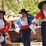 Fiestas Patrias 2019 Pisco Elqui