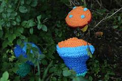 Arboretum Yarn Bomb-5