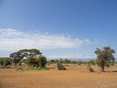 2019 Kenya, camping Kimuni )Amboseli N.P.=