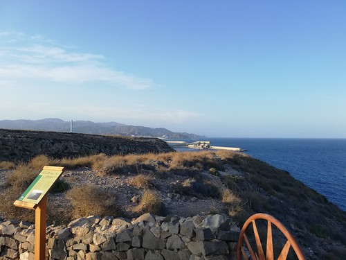 Mirador de la Playa de los Muertos