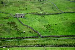 Barn in the green