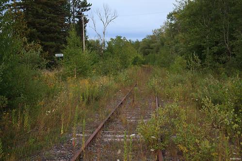 The White Pine Line at Saxon