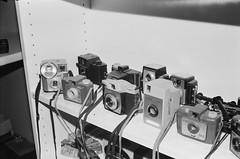 Cameras for 127 film