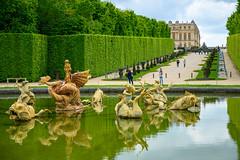 78141-Versailles