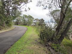 Eden Road - Bibbulmun Track, Nullaki Peninsula, Western Australia